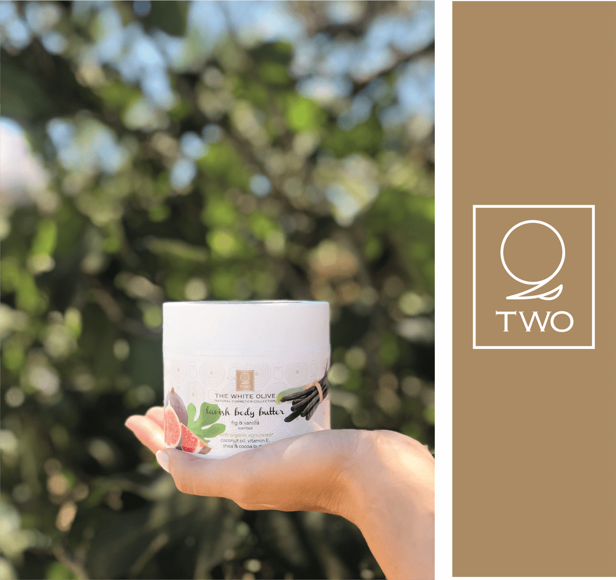About The White Olive